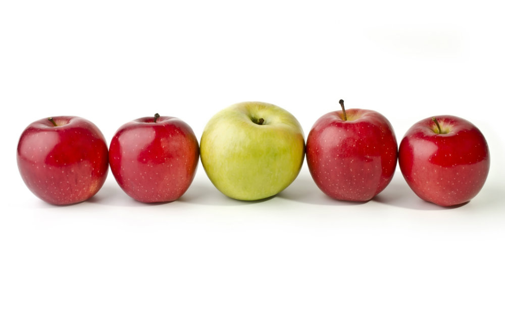 Imagen de manzanas de diferentes colores y formas