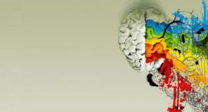 imagen de un cerebro de colores